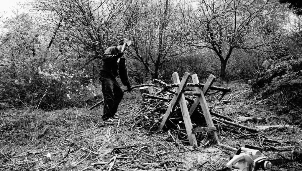 Kávoši - Nikola - pěstování - rekultivace zahrady - pálění dřeva